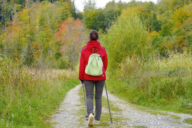 Prepare for Hiking with Herbal First Aid Kit