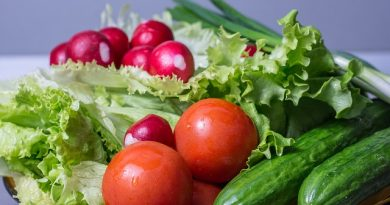 How to Get Started with Organic Gardening Supplies