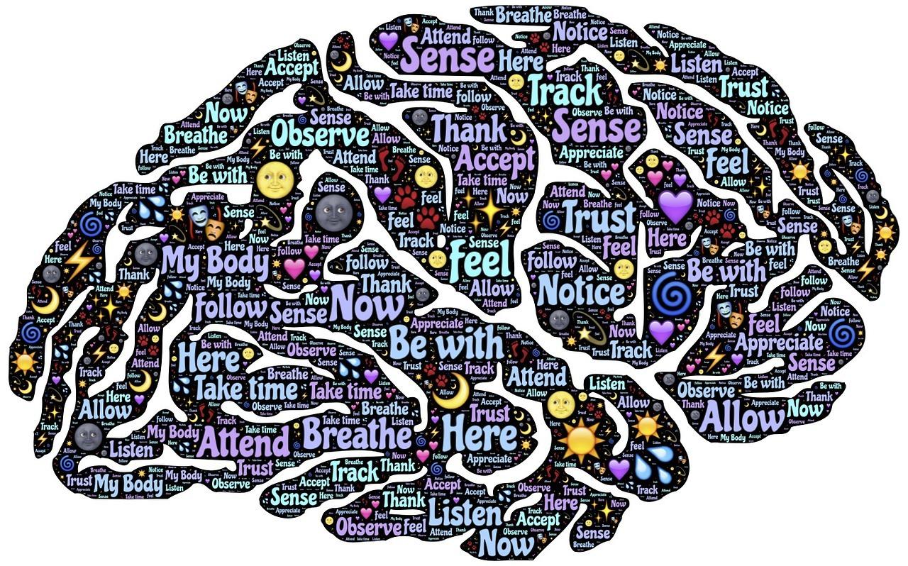 Keep Brain Health Strong in Summer