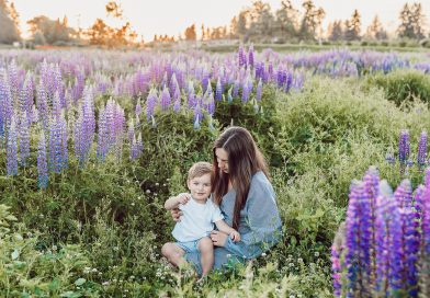 Best Herbs for Families