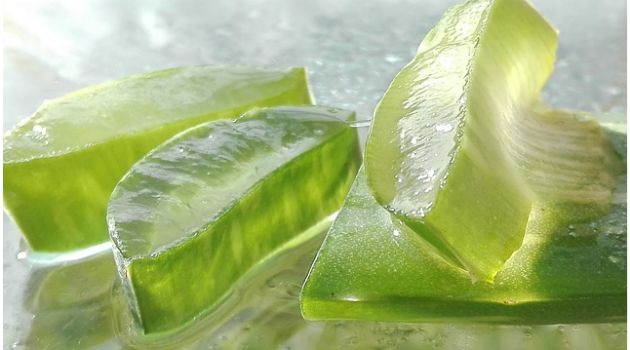 Improve Your Symptoms of IBS With Aloe Vera Gel