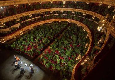 Barcelona Opera Plays to Houseplants