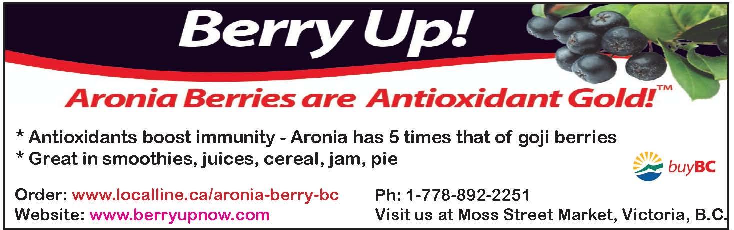 Berryup.com, aronia berries